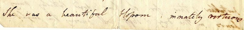 Letter from Sarah Manning Vaughan to Mrs. Charles Vaughan.